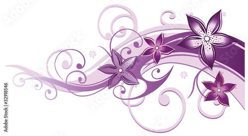ranke flora blumen bl ten filigran lila violett rosa stockfotos und lizenzfreie. Black Bedroom Furniture Sets. Home Design Ideas