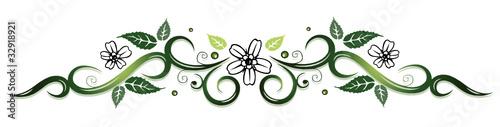 ranke flora blumen bl ten filigran gr n gr nt ne stockfotos und lizenzfreie vektoren auf. Black Bedroom Furniture Sets. Home Design Ideas