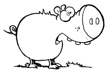 Chubby Pig Eating Grass Scared Pig With An Open Mouth