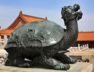 Turtle in the Forbidden City of Beijing