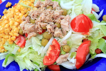 Salad with tuna fish and olives Spain