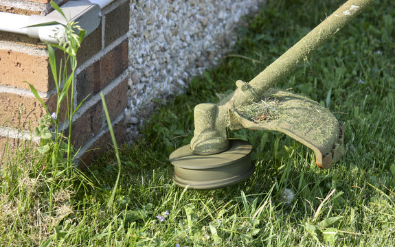 weed eater trims grass