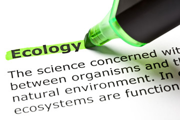 Dictionary definition of the word Ecology