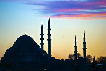 Suleiman Mosque 01