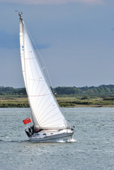 Yacht with white sail