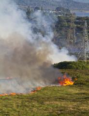Heathland Fire