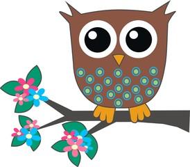 a cute little brown owl