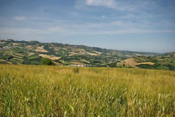 val tesino di Ripatransone, regione Marche