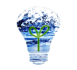 green energy concept plant growing inside the light bulb