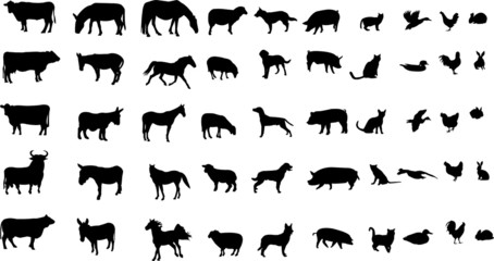 collection of farm animals silhouettes - vector