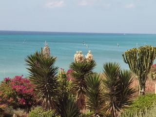 Blick über Palmen und Kateen auf das türkis farbene Meer
