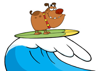 Happy Dog While Surfing