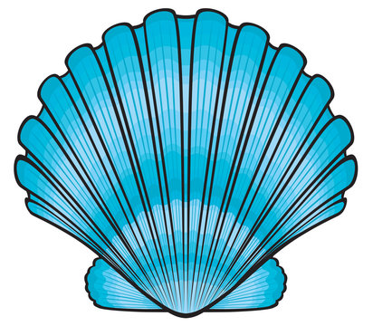 Free Seashell Clipart Images Cliparts And Others Art - Seashell Clipart Png  - Free Transparent PNG Clipart Images Download