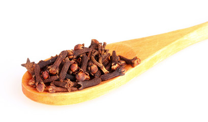 spice clove in spoon isolated on white