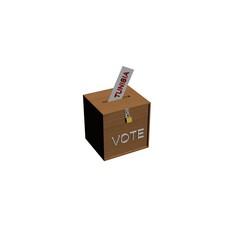 box voting tunisia
