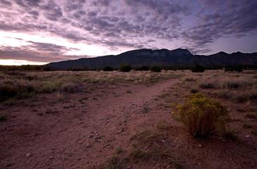 Desert Landscape: Sandia Mountains