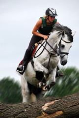 Foto op Aluminium Paardrijden Reiterin im Sprung