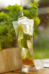 Fresh cocktail with mint and lemon