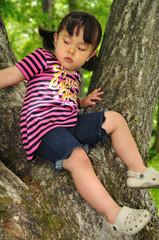 大樹と少女