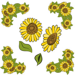 Sunflower Design Element Set