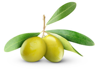 Isolated olives. Two green olive fruits with leaves isolated on white background