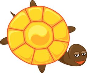 tortoise with yin-yang