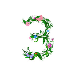 Flower number of butterflies