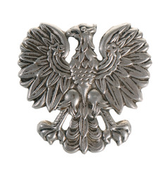 Metal eagle - military symbol