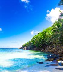 Panorama Summertime Shore