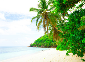 Dream Summertime Shore