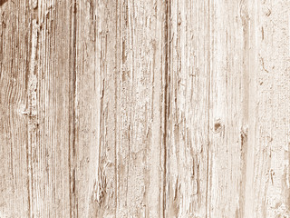Pale Wooden Texture Background