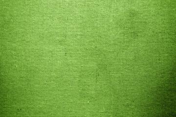 Closeup of green textured surface