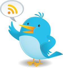 Blue Bird talk
