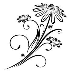 Ranke, flora, Blumen, Blüten, filigran, Wandtattoo