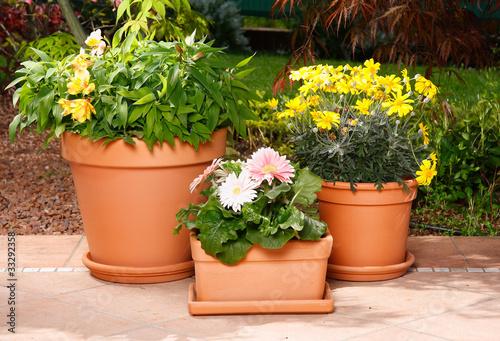 Vasi in terracotta con fiori immagini e fotografie for Vasi in terracotta prezzi