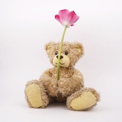 Cute cilly looking toy bear with flower