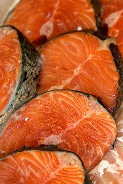 saumon darnes de poisson