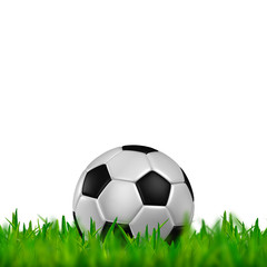 football in green grass on white background