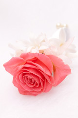 boutonniere of pink roses