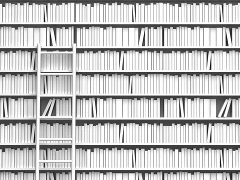 本棚とはしご
