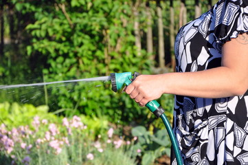 watering the plants with garden hose