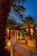Garden Design - Mediterranean Garden