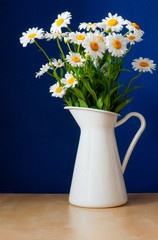 Oxeye Daisies in the Pitcher