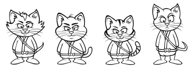 kitten ninja lineup