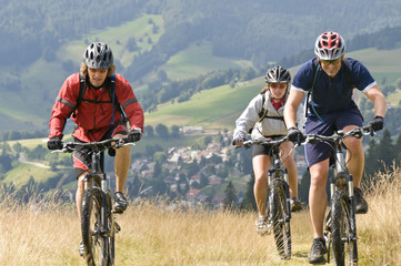 Fototapete - Biken im Schwarzwald