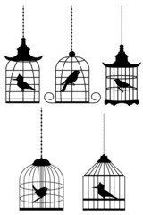 Wall Murals Birds in cages bird in cage