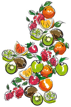 MONTAGE FRUITS