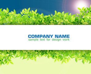 Green leaf border on soft blue sky synthesis background template