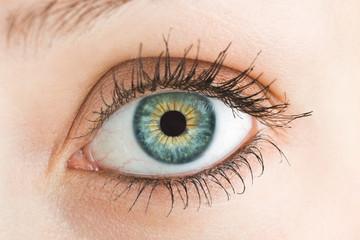 Macro photo of a female eye