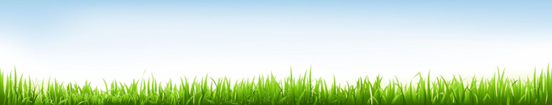 Header With Grass